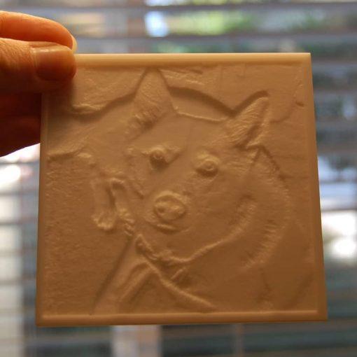 Pet photo carved piece - light off