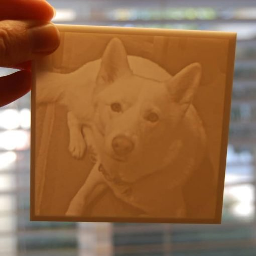 Pet photo carved piece in the light