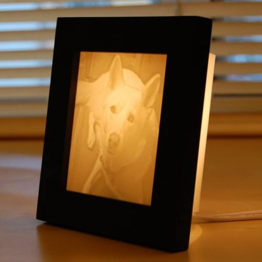 Pet Photo Lamp