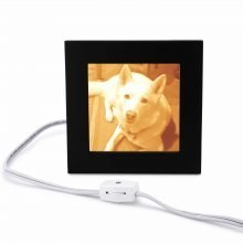 Personalized pet owner gifts |Pet Photo Gift Medium Lamp