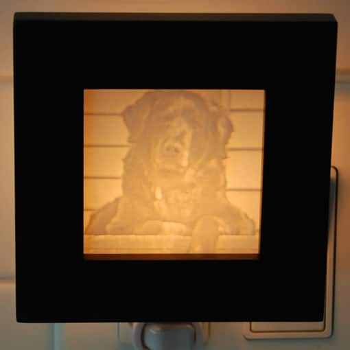 Pet gift Night Light based on a dog that passed away